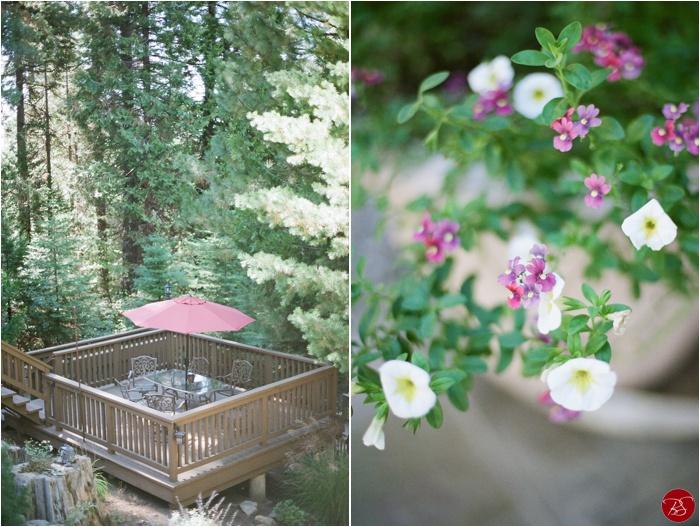 paradise-springs-oakhurst-california-wedding-photos-jamie-judy-pictures_0003